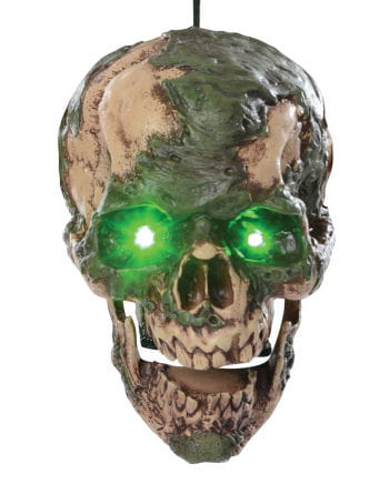 Modernder & sprechender Zombie Kopf