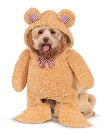 Teddy Bär Kostüm für Hunde