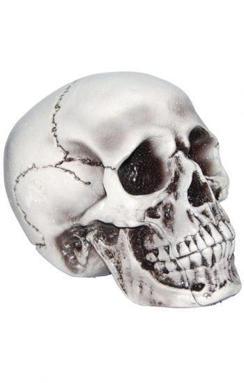 Beiger, realistischer Totenkopf
