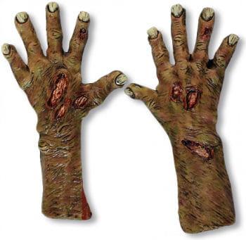 Untote Zombie Hände