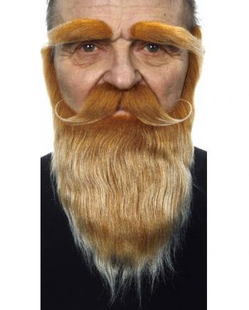 Rot-blond melierter Vollbart mit Schnauzer und Augenbrauen