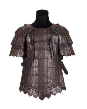 Vikings Harnisch luxurious