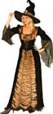 Taffeta Witch DLX Costume. SM