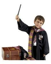 Harry Potter Costume Chest