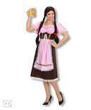 Bavarian Dirndl Costume
