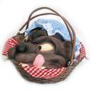 Rotkäppchen picnic basket with Wolf