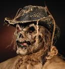 Scarecrow Make up Set
