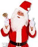 Santa Claus wig with beard