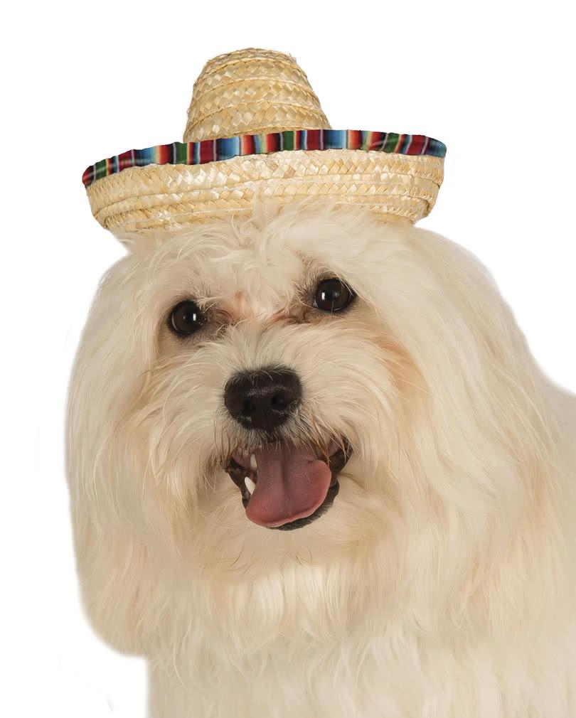 sombrero f r hunde kost mzubeh r f r deinen hund karneval universe. Black Bedroom Furniture Sets. Home Design Ideas